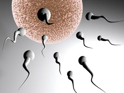 Fertilidad acupuntura en mallorca